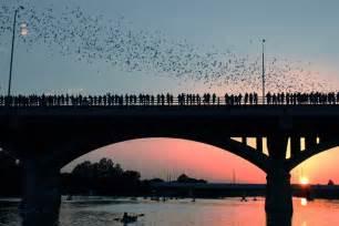 Bats Bridge Plan A Trip To Explore Tourist Attraction