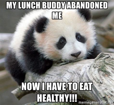 Sad Panda Meme Generator - my lunch buddy abandoned me now i have to eat healthy