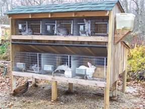 Rabbit Hutch With Run Underneath Quail On Pinterest Quails Quail Eggs And Raising Quail