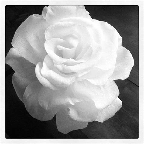 Paper Roses Out Of Tissue Paper - 1000 images about flower costume on flower