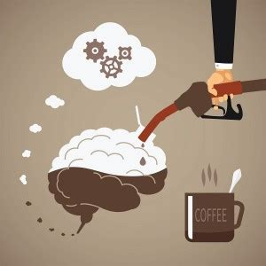 creatine effects on brain how caffeine affects dopamine levels in the brain