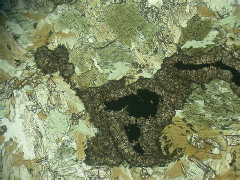 sphene in thin section wisconsin geological natural history survey 187 titanite