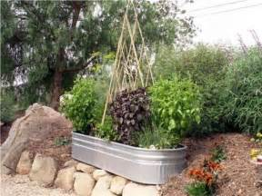 Small Garden Layout Ideas Rustic Vegetable Garden Ideas House Beautiful Design