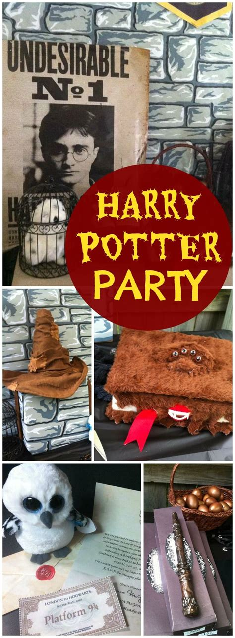 Harry Potter Birthday Supplies Australia by 168 Best Harry Potter Ideas Images On