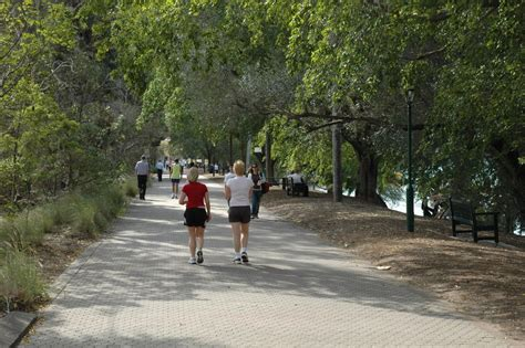 Fit Botanical Gardens Where To Get Fit In Brisbane Brisbane Executive Transfers