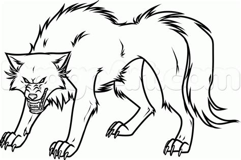 how to draw a how to draw a white wolf step by step anime animals