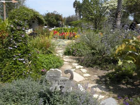 South Coast Botanical Gardens by Kid S Area Picture Of South Coast Botanic Garden Palos