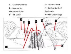 Label The Floor Worksheet by Floor Diagram Worksheet Davezan