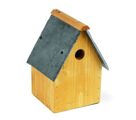 a quick guide to wild bird nest boxes farm and pet place