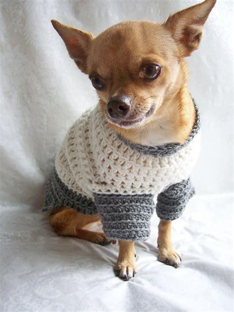 dogs  handmade dog sweaters cute cuter cutest