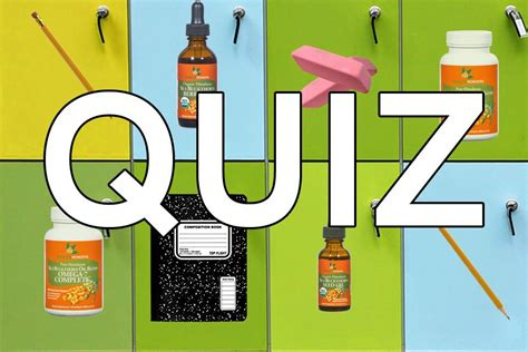 supplement quiz the ultimate plant based omega source seabuckwonders