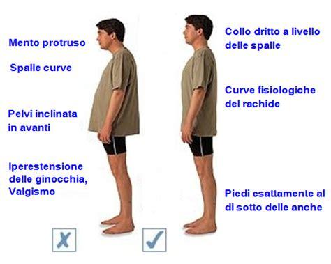 mal di schiena da seduti obesit 224 e mal di schiena osteopata it osteopata a roma