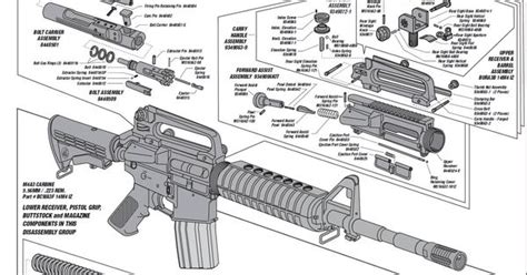 ar 15 parts diagram pdf ar 15 breakdown diagram ar lower diagram elsavadorla