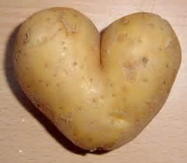 the potato master race
