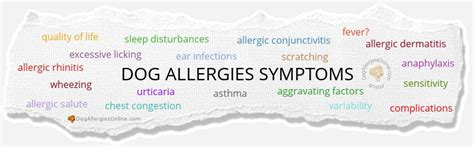 allergy to dogs allergies symptoms