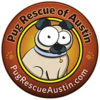 pug rescue stories pug rescue of