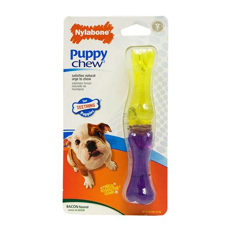 nylabone puppy chew buy nylabone puppy stix chew small