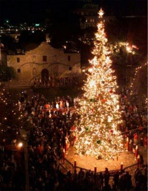 tree lighting san antonio tree lighting ceremony at the alamo in san antonio