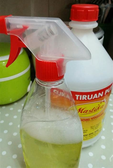 diy setting spray mudah wanita kongsi cara halau semut dengan spray d i y ni memang berkesan petua ibu