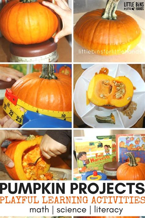 pumpkin activities pumpkin activities and learning ideas for fall