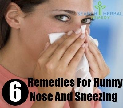 Runny Nose And Sneezing Effects Of Juice Detox 6 herbal remedies for runny nose and sneezing how to