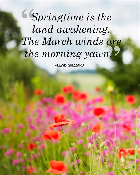spring quotes 26 spring quotes life quotes humor