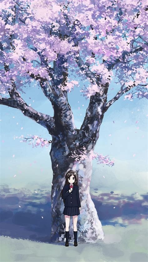 cherry blossom wallpaper  iphone  wwwiphonertcom