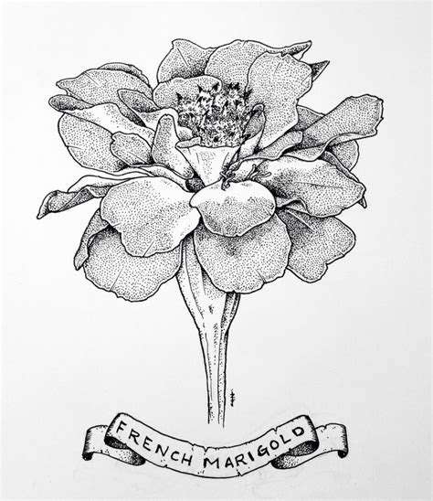 marigold tattoo designs best 25 marigold ideas on october