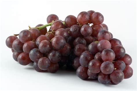 Grapes Diet Detox by Grapes Detox Drink Recipes
