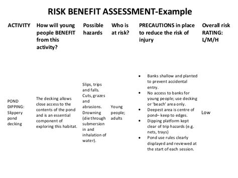 Risk Benefit Assessment Template by Engineer S Are Responsible For Safety