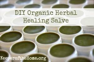 homemade organic herbal salve recipe  homestead survival