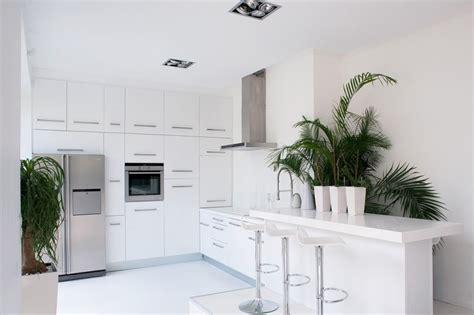 15 Popular Indoor Plants For Tropics Eva Furniture | 15 popular indoor plants for tropics eva furniture