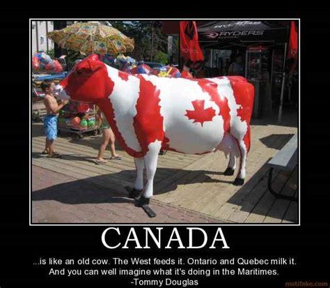 Canada Day Meme - canada funny quotes quotesgram