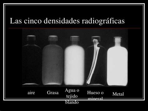 imagenes radiograficas pdf bases de radiologia veterinaria