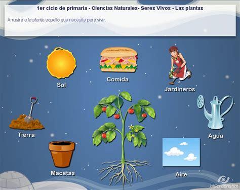 juego cadena alimentaria online juego sobre las plantas 187 recursos educativos digitales
