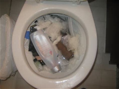 Blocked Toilet Don T Be The Cause Of Your Blocked Drains Clogged Drains