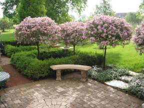 plant bed and border ideas barrington il traditional