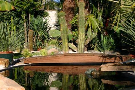 Botanischer Garten Pflanzenverkauf by Die Gro 223 E Palme Im Hintergrund Ist Ein Trachycarpus