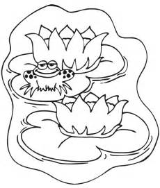 frog coloring page frog animal coloring pages for