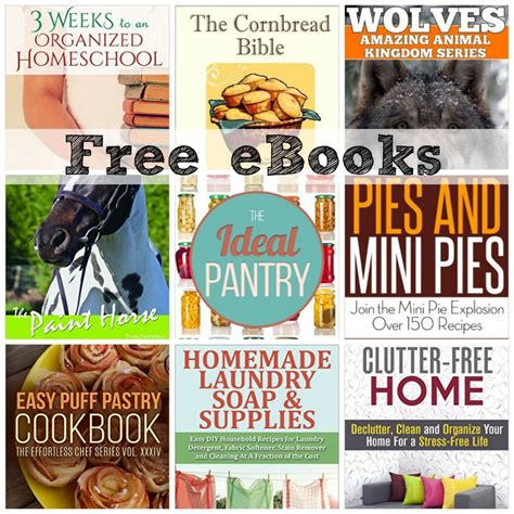 laundry books free ebooks laundry soap the cornbread bible