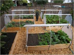 Garden Bed Layout Raised Bed Vegetable Garden Layout Raised Bed Vegetable Garden Layout Best Astonishing