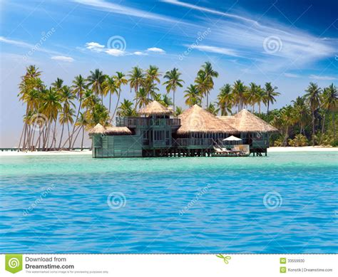 House Plans On Pilings by The Wooden House Against Palm Trees On The Tropical Island