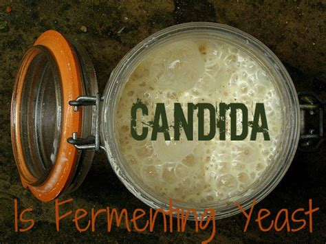 Struggling To Pass Stools by Candida The Root To Many Health Problems Home Cures