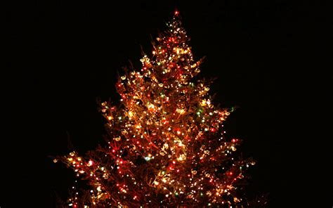 images of christmas for wallpaper 25 super hd christmas wallpapers