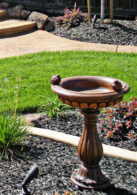 is landscaping overwhelming sacramento landscape