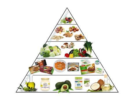 alimentazione chetogenica nutrizione996 nutrizione e ironia novit 224 sulla dieta