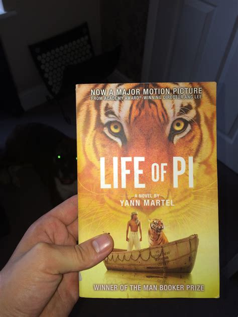 quest pattern life of pi life of pi yann martel book review the good life companion
