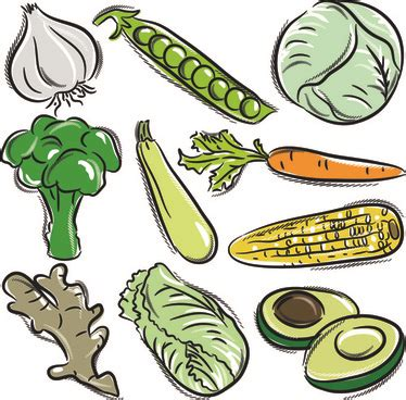 Drawing Vegetables by Children Drawing Vegetables Free Vector 91 699