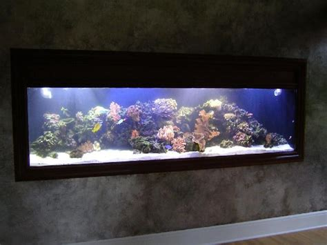 wall aquarium praneetha aquariums aquariums