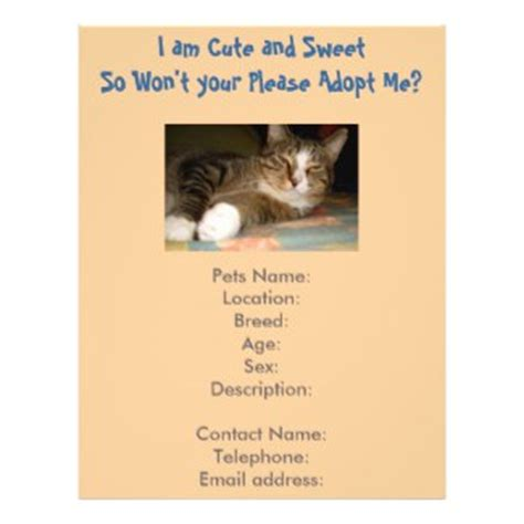 adoption flyer template cat adoption guide get ready for cat adoption finding adopters